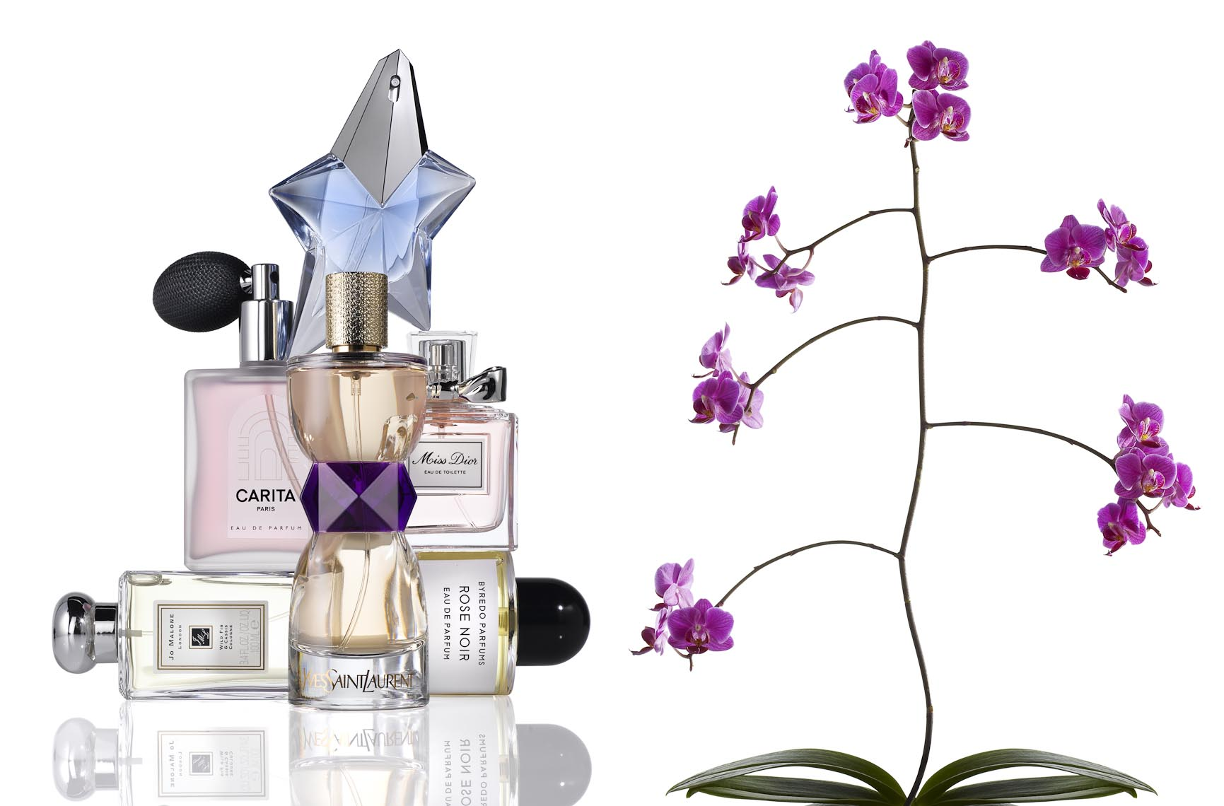 Cosmetics, Perfume Bottles and Orchid with Pink Blossoms - Mike Lorrig