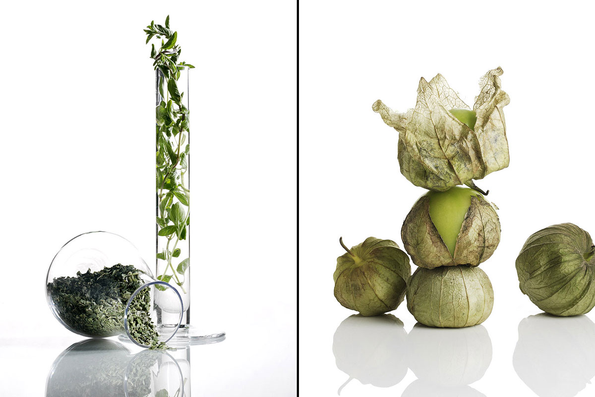 Food Still Life, Oregano And Tomatillos